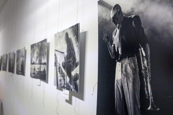 Фотоохота_выставка