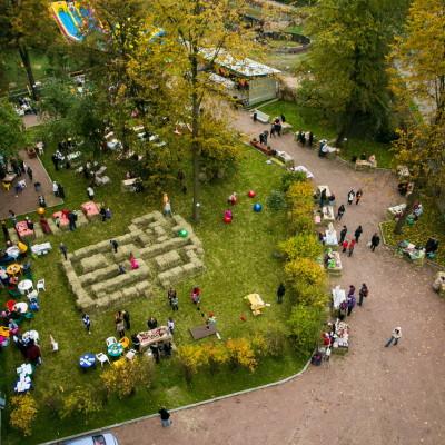 День яблок  в Эко-Лофте More Place