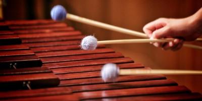 marimba-i-udarnye