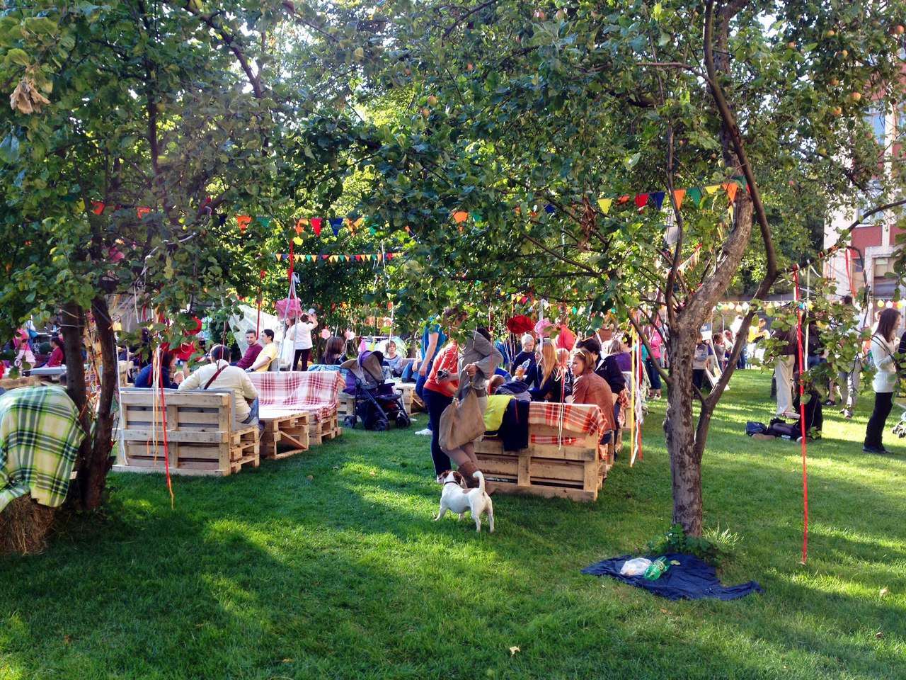 фестиваль экологии 12 августа